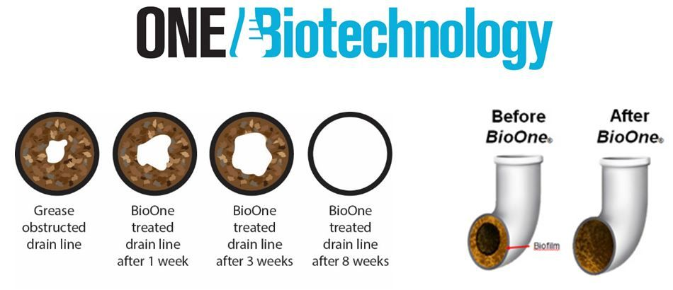 One Biotechnology